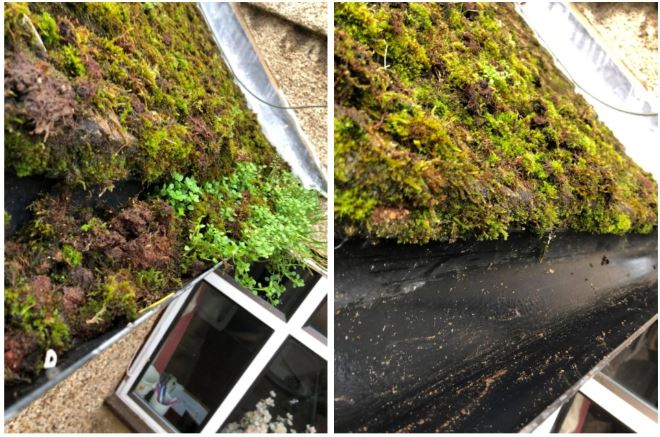 gutter cleaning before and after cleaning with the SkyVac
